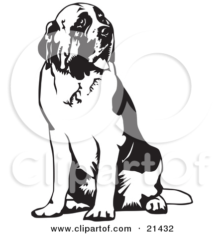 Clipart Of A Black and White St Bernard Dog.