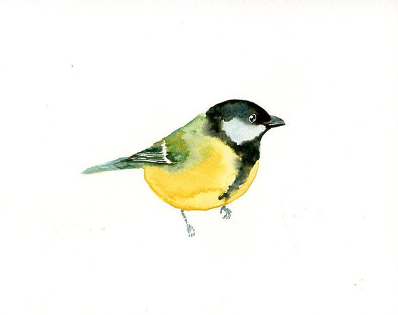 GREAT TIT Original watercolor painting 10X8inch by dimdi on Etsy.