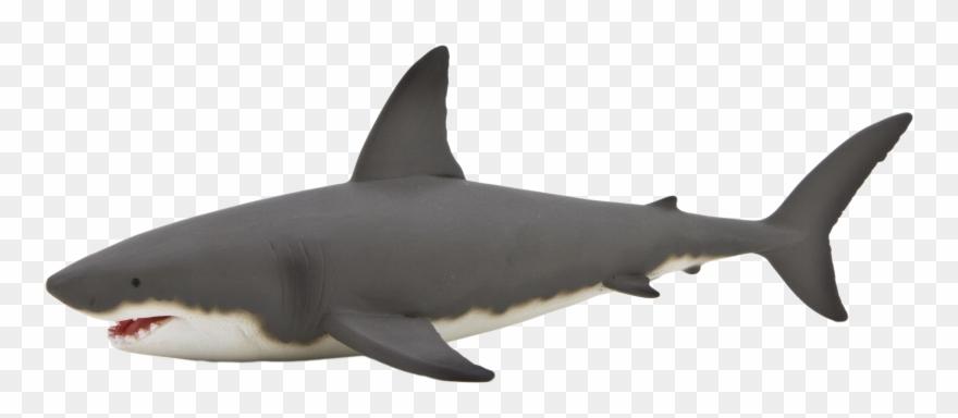 Great White Shark Clipart Gray Shark.