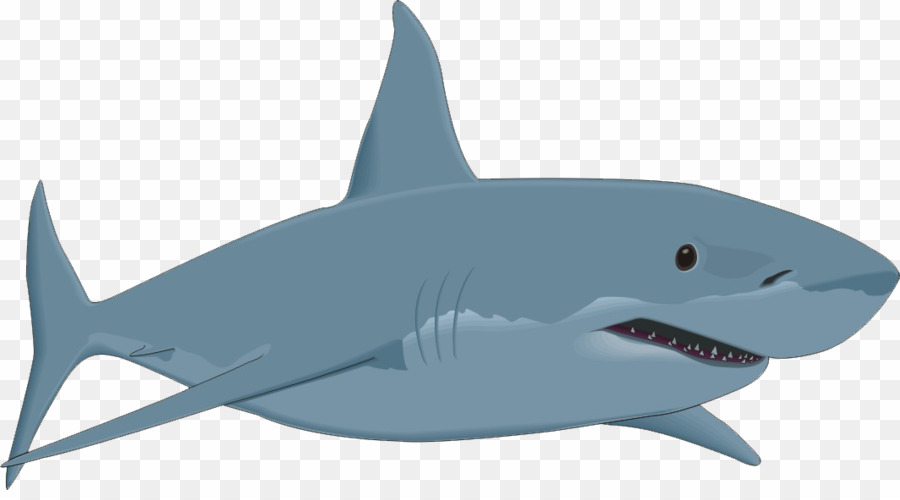 Great White Shark Clip Art PNG Great White Shark Clipart download.