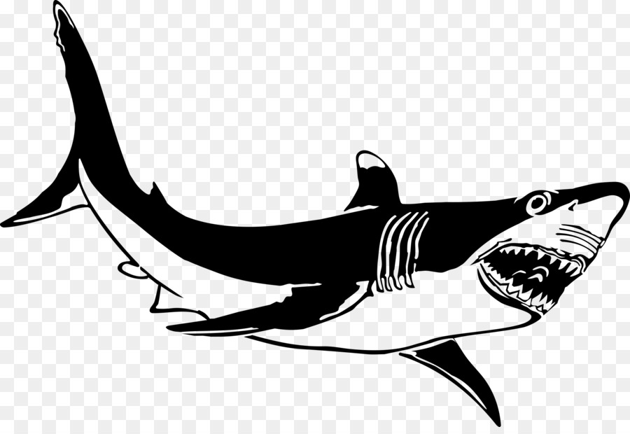 Great White Shark Background clipart.