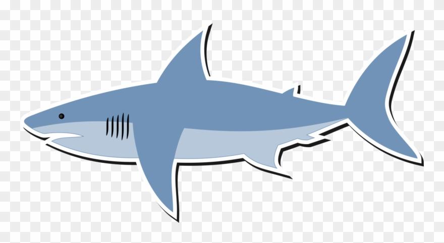 Great White Shark Bull Shark Shark Finning Lemon Shark.