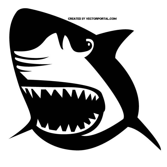 great white shark mouth open clipart 20 free Cliparts