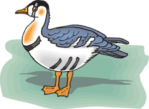 The Grebe Clip art.