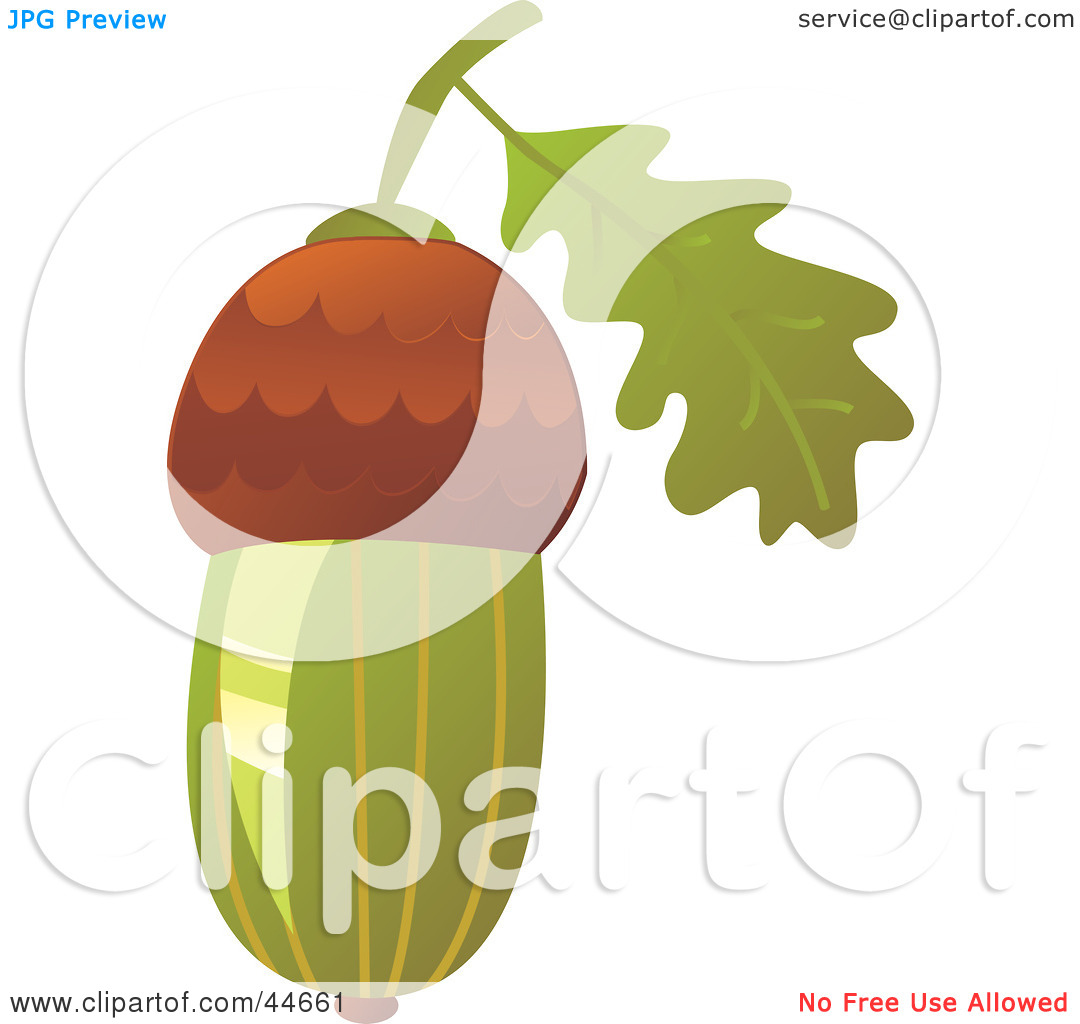 Clipart Illustration of a Green Acorn by MilsiArt #44661.