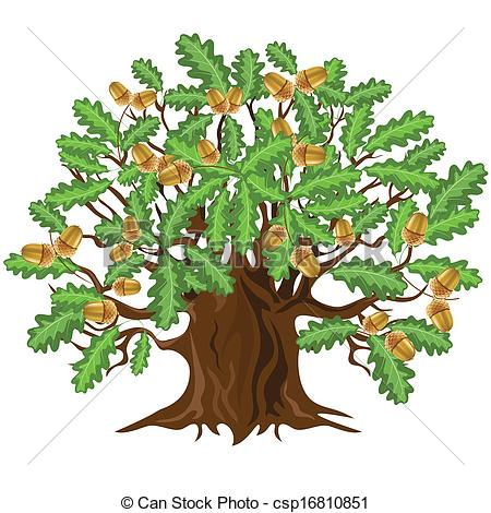 Clipart Vector of Oak tree with acorns, vector illust.