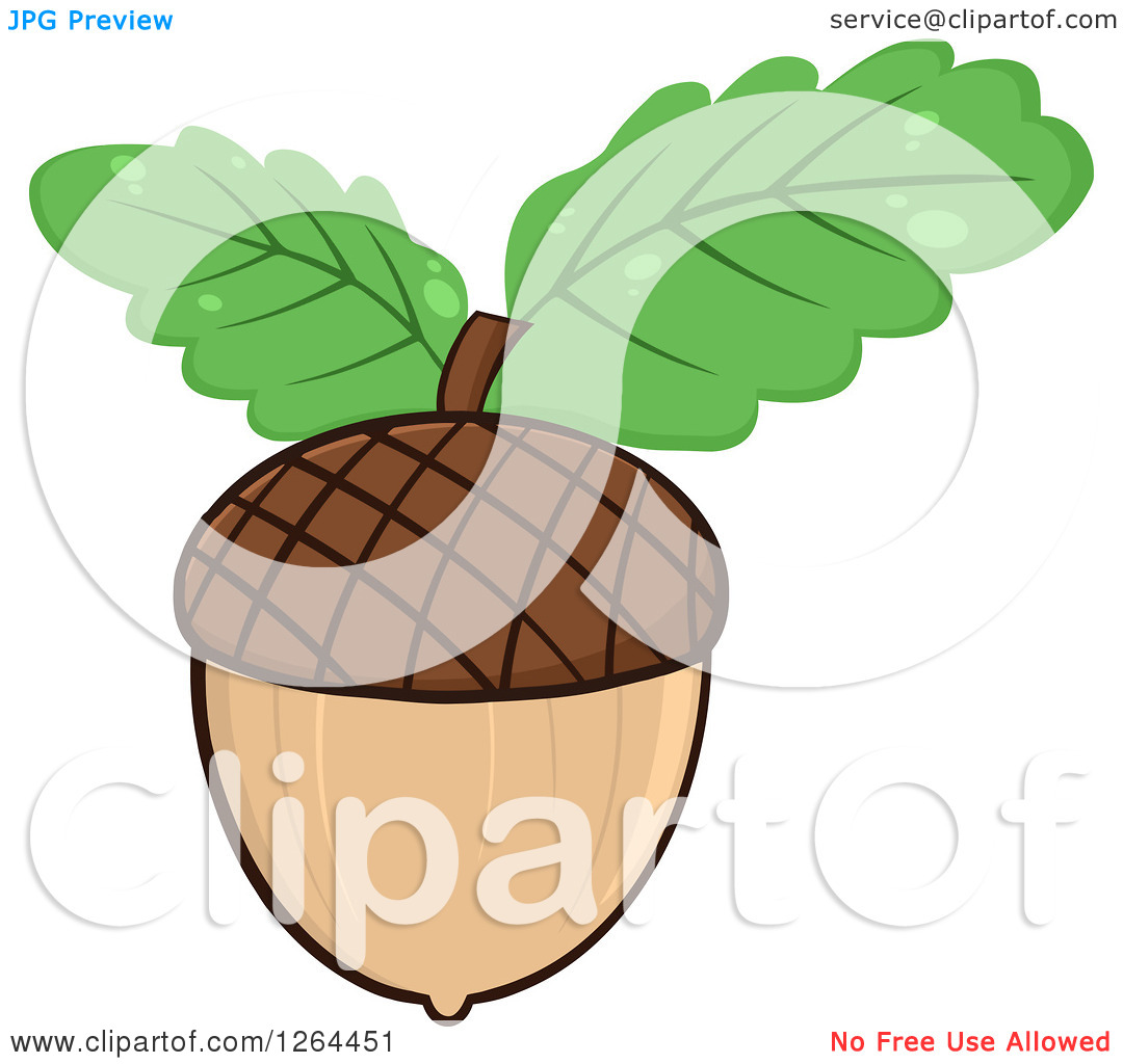 Clipart of an Acorn with Green Oak Leaves.