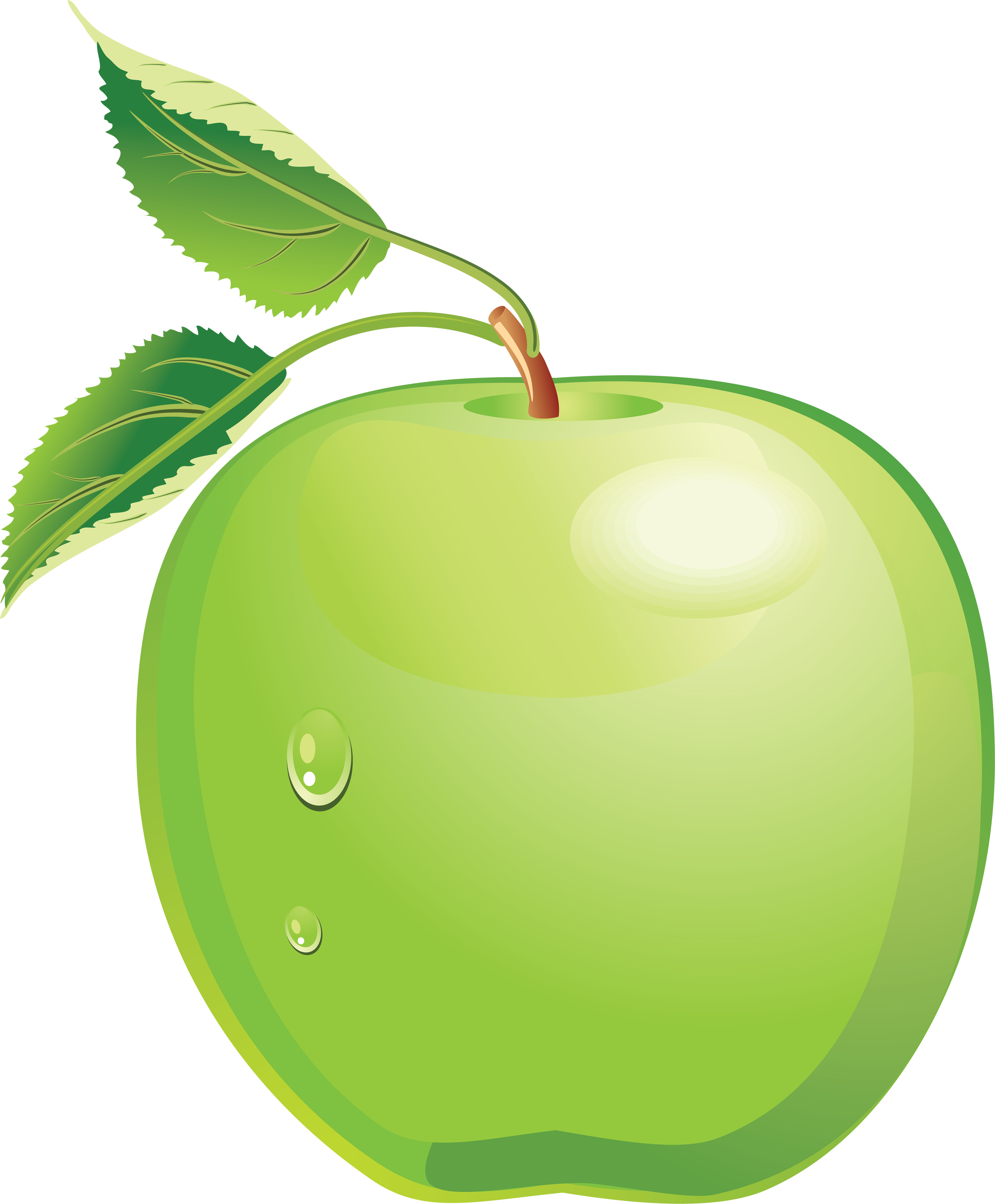 Green Apple Clip Art.