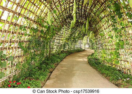 Pictures of Garden tunnel archway in a classical garden.