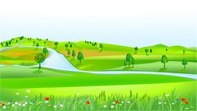 Fields Hilly Area Stock Illustrations.