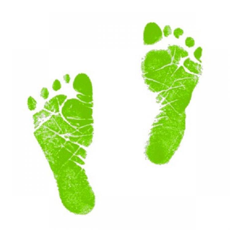 Foot Print Images.