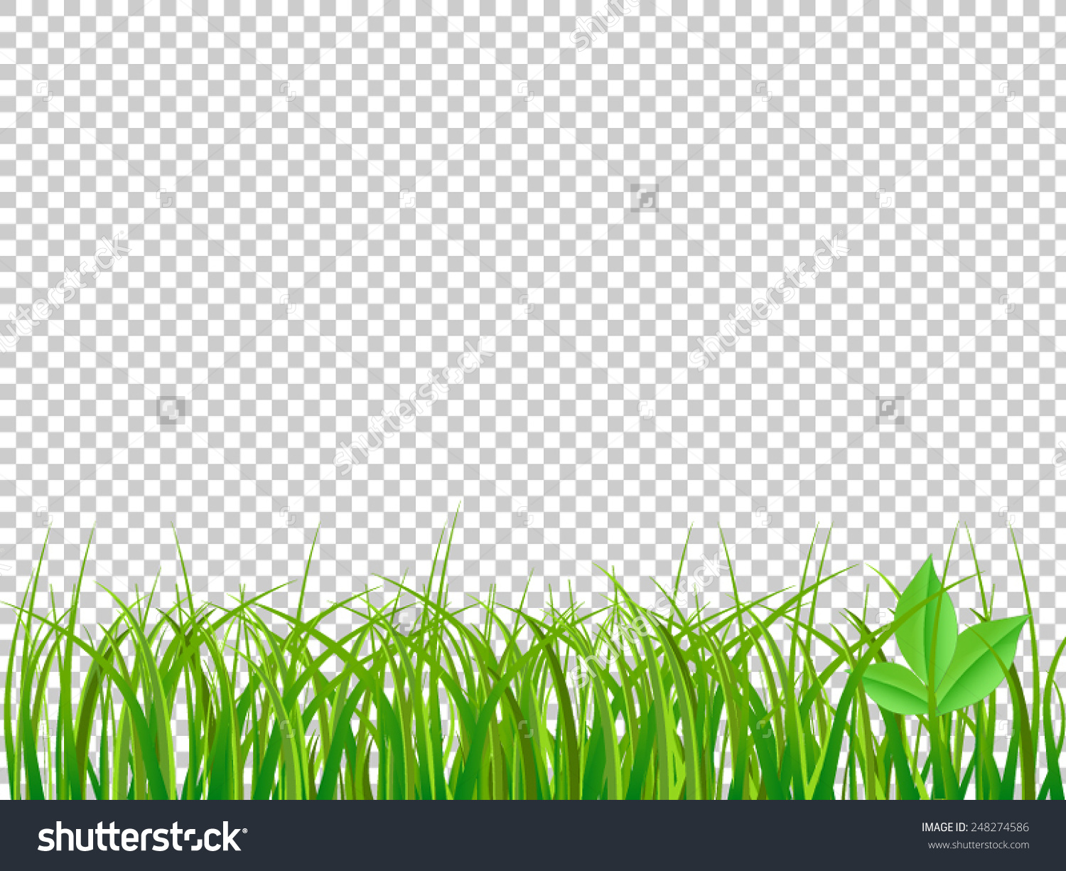 Green background clipart #12