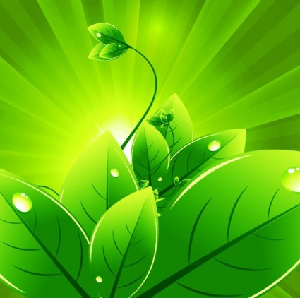 Green background clipart #20