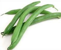 Free Green Beans Plants Clipart.
