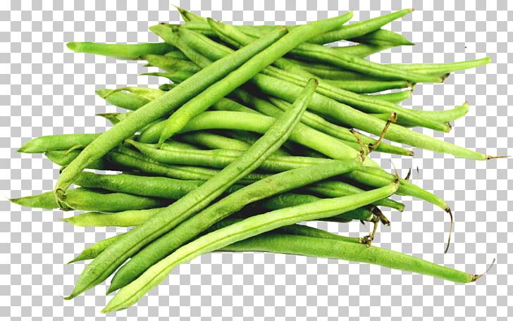 Green bean PNG clipart.