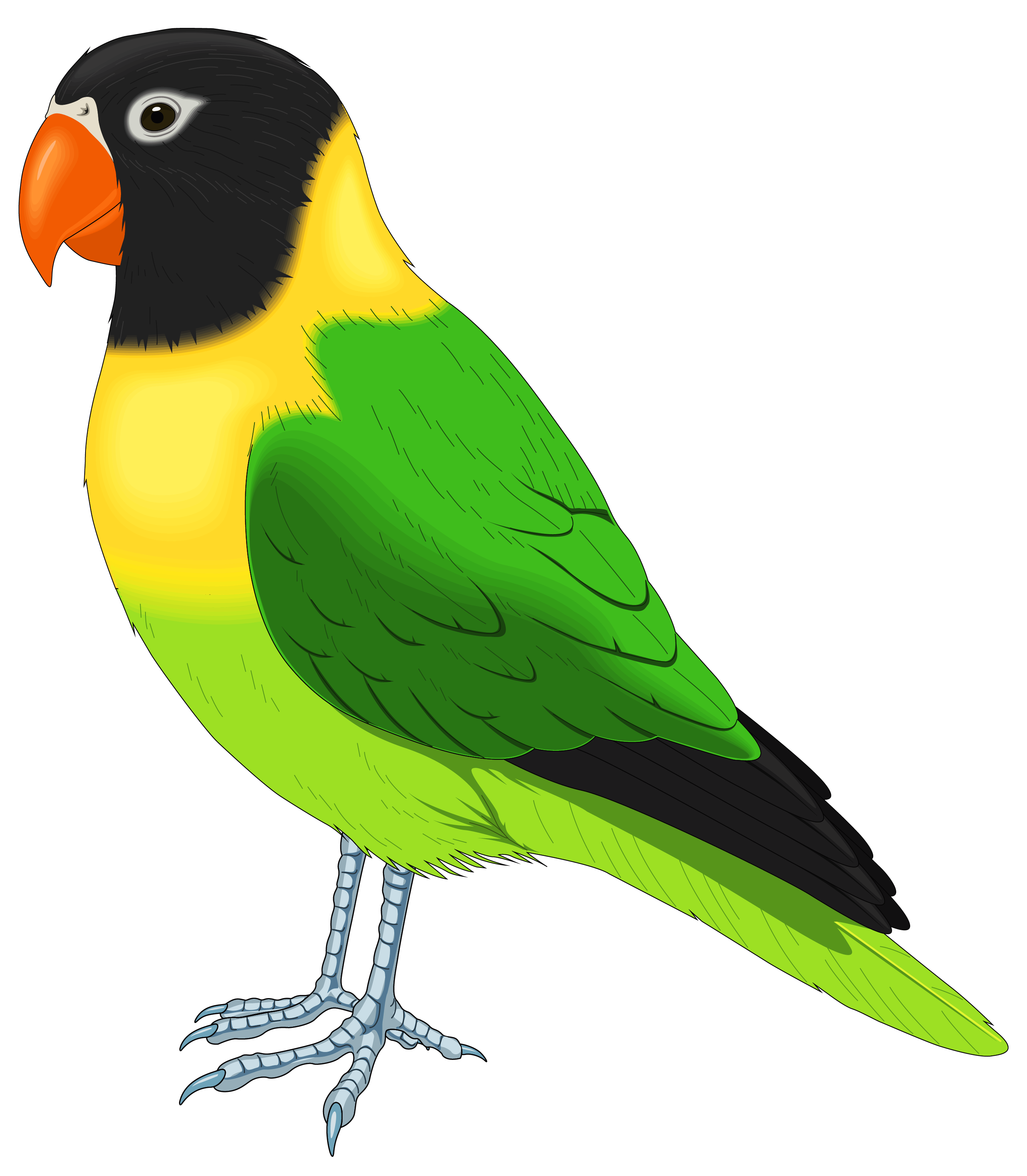 Green and Yellow Bird PNG Clipart Image.