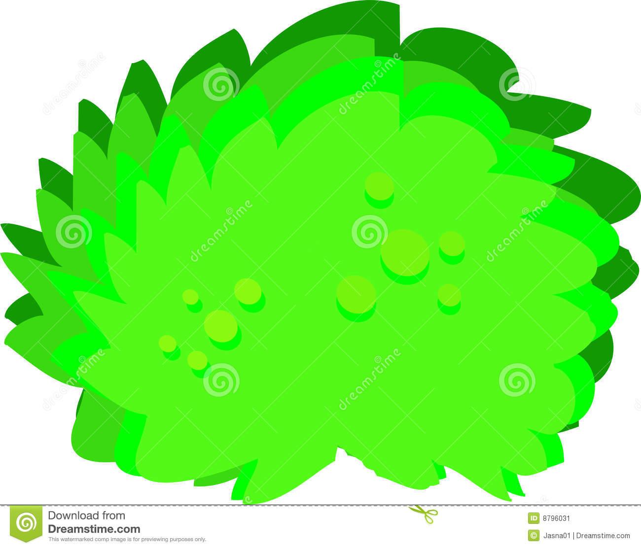 Big Green Bush Stock Illustrations.