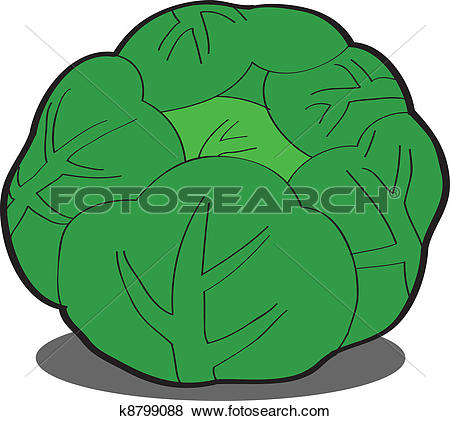 Clip Art of Green cabbage k8799088.