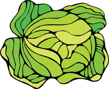 Cauliflower Clipart.