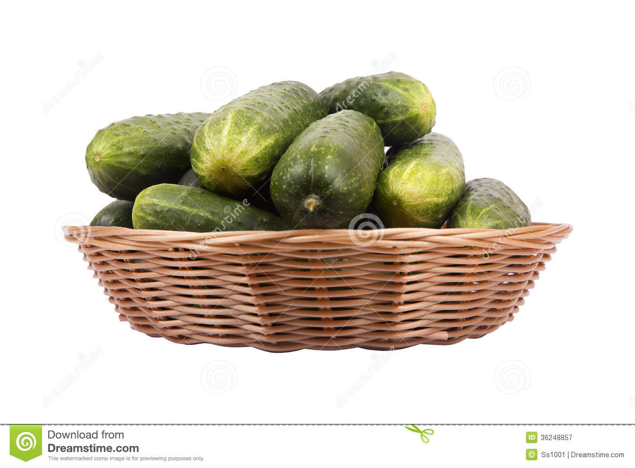 Basket With Cucumbers Royalty Free Stock Photography.