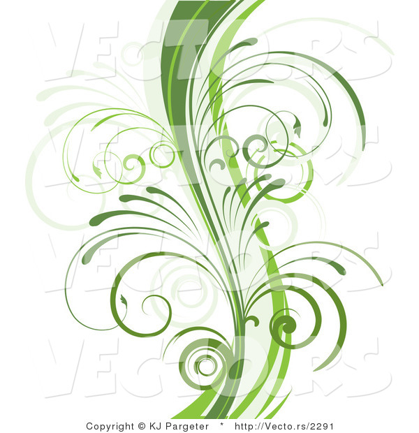Vector of Curvy Organic Green Vines with Young Curly Stems.