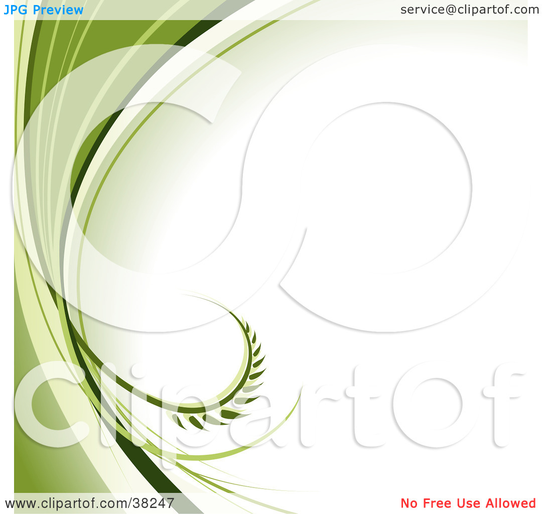 Clipart Illustration of a White Background With A Curling Leaf.