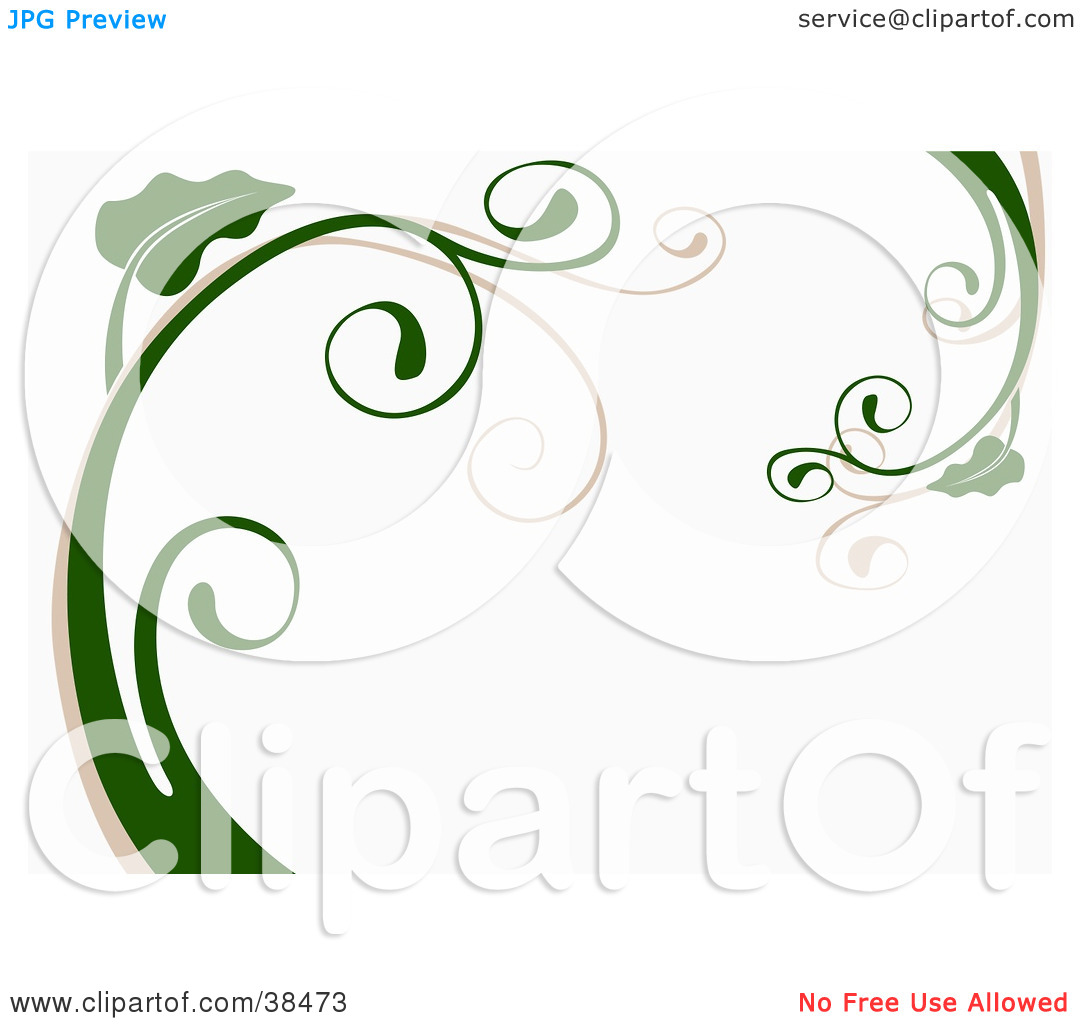 Clipart Illustration of a White Background With Beige And Green.