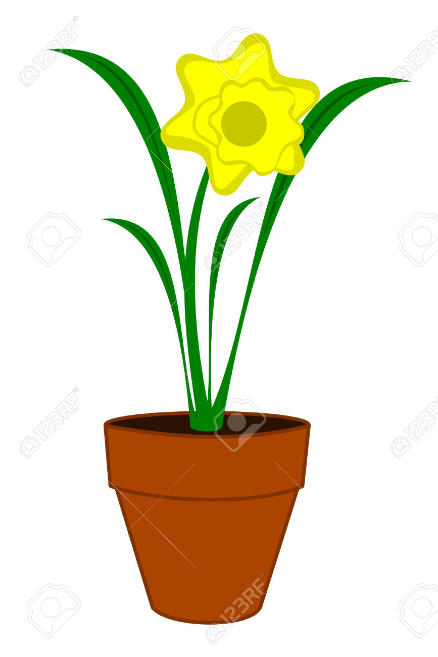 A Yellow Daffodil Flower In A Pot Royalty Free Cliparts, Vectors.