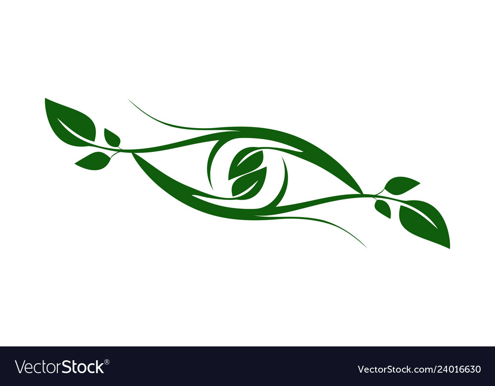 Plant leaves abstract eye logo icon nature green.