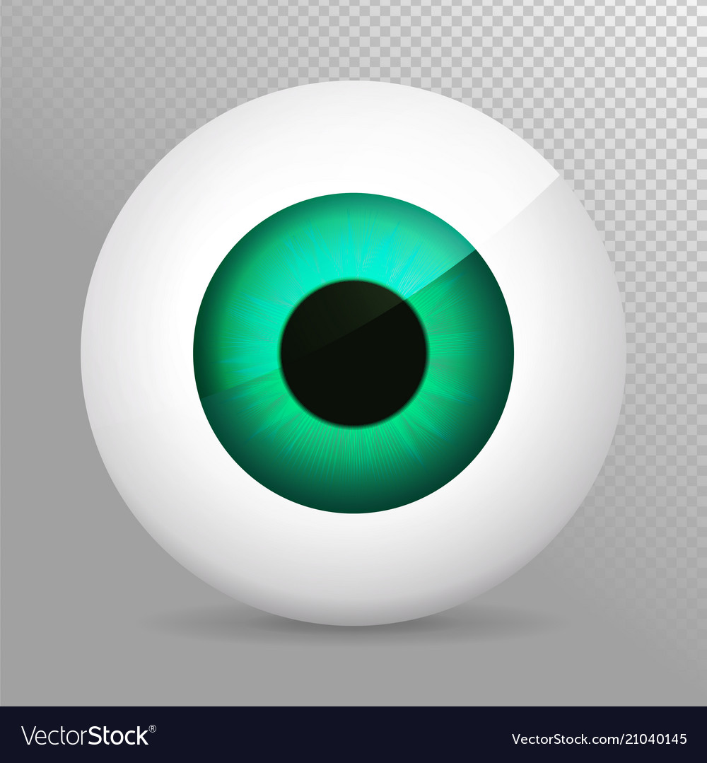 Eye green realistic 3d eyeball irispupil icon.