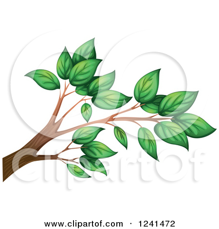 Clipart Black And White Sketched Bare Tree Branch.