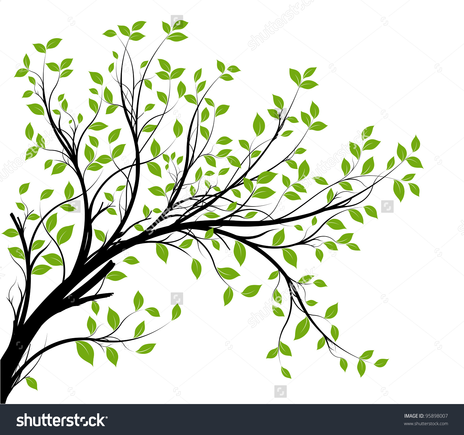 Vector Decorative Branch Silhouette Green Leaves Stock Vector.
