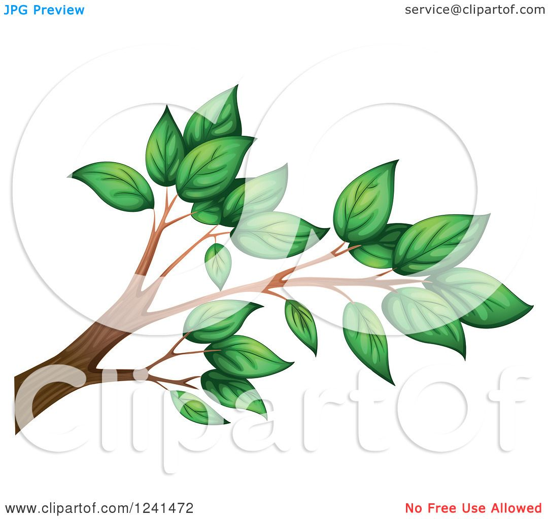 Clipart of a Tree Branch with Green Leaves.