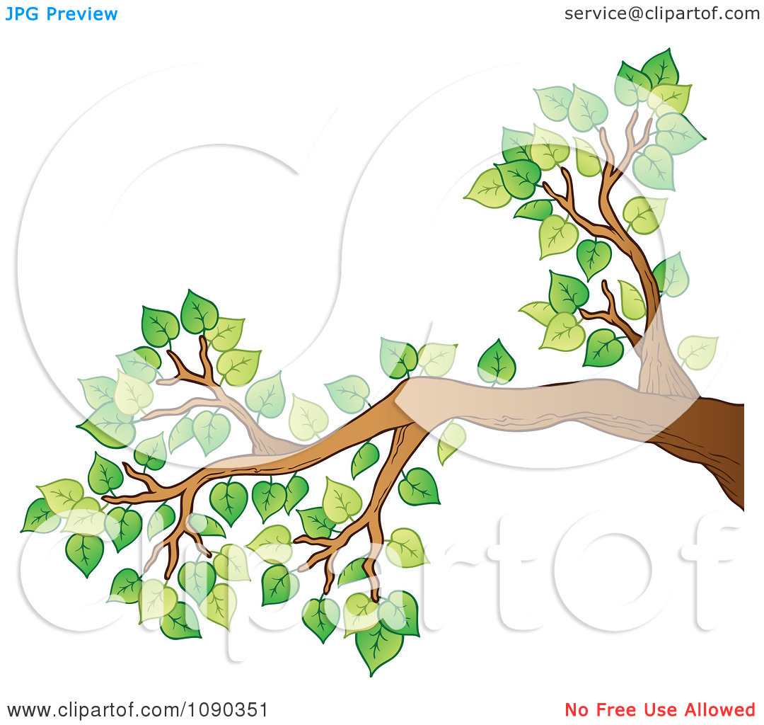 Clipart Tree Branch With Green Spring Foliage.