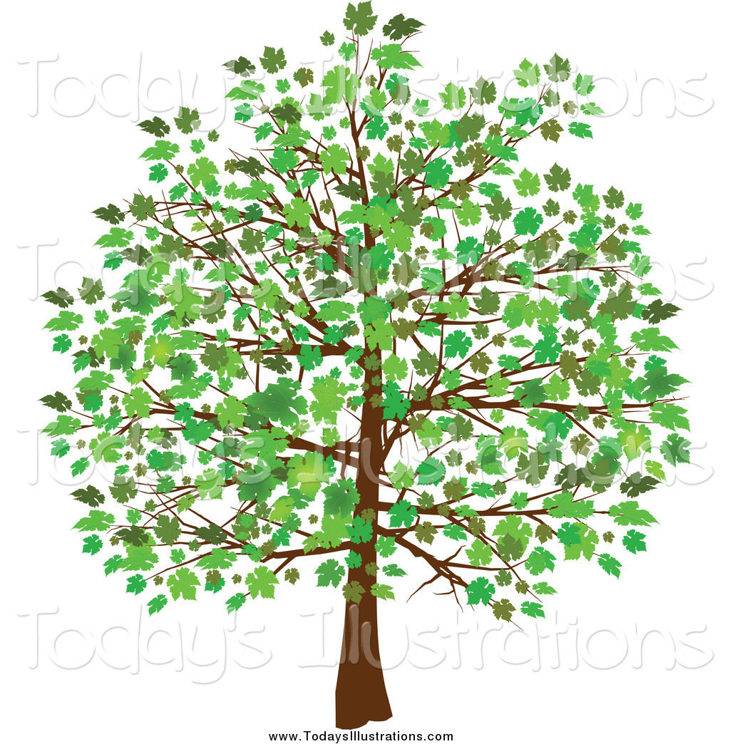 Clipart of a Tree with Green Leaves and Foliage by elaineitalia.