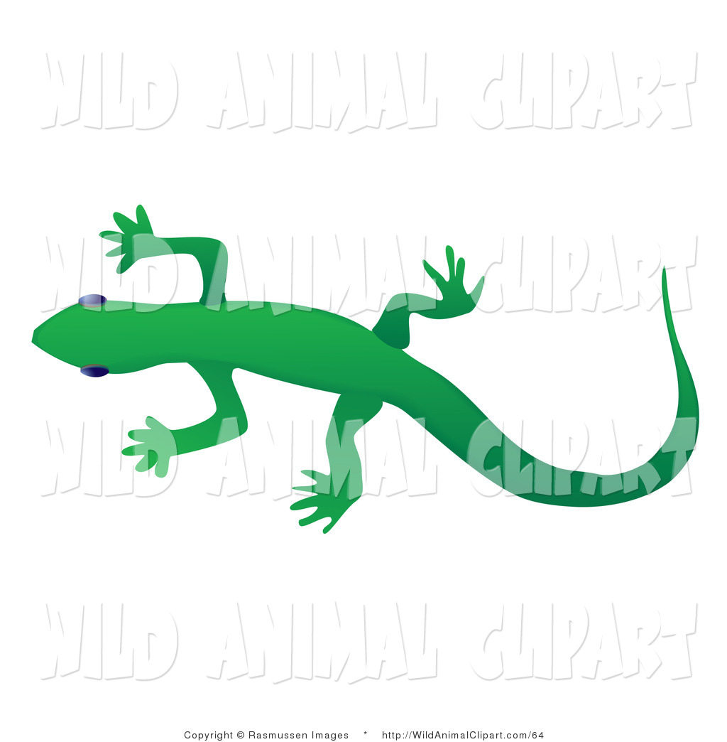 Clip Art of a Solid Green Gecko Lizard Crawling over a White.