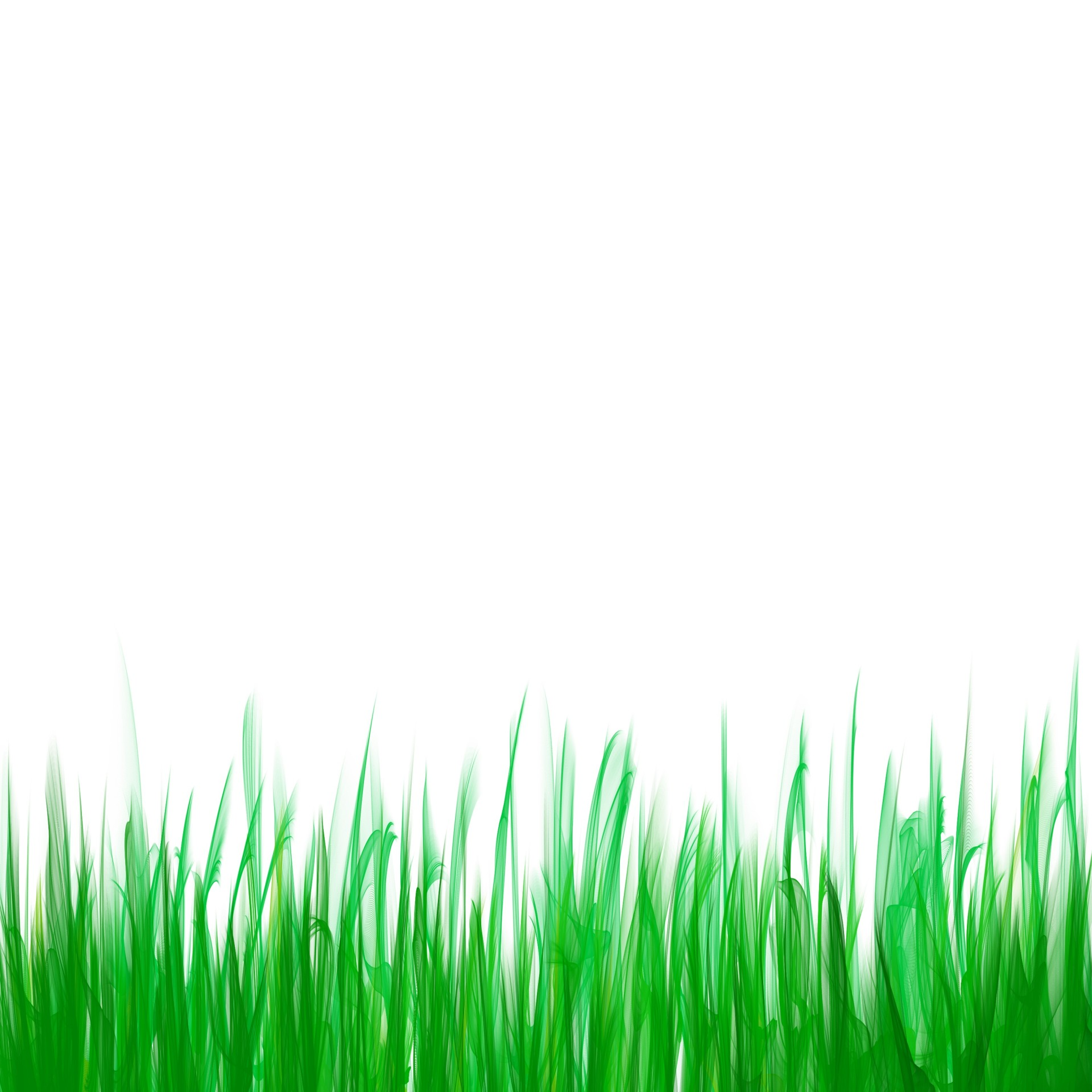 Green Grass Clipart Free Stock Photo.