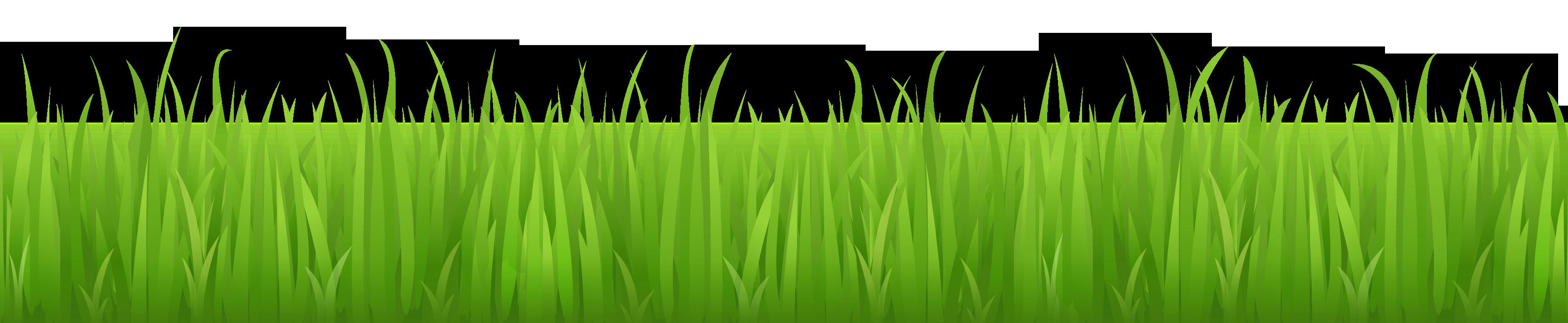 Green grass clipart - Clipground