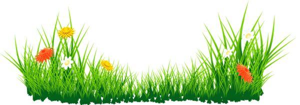 Цветы с травой PNG изображение.