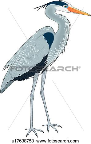 Heron Clipart EPS Images. 862 heron clip art vector illustrations.