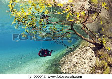 Stock Photo of Austria, Styra, Tragoess, Green Lake, Diver.