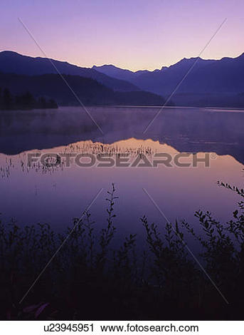 Stock Photography of Sunrise glows purple in the reflection, Green.