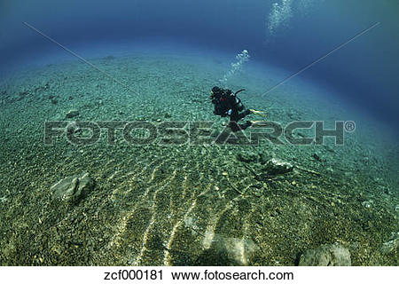Stock Photography of Austria, Styria, Tragoess, Diver at the Green.
