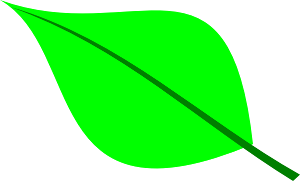 Green leaf clipart #20