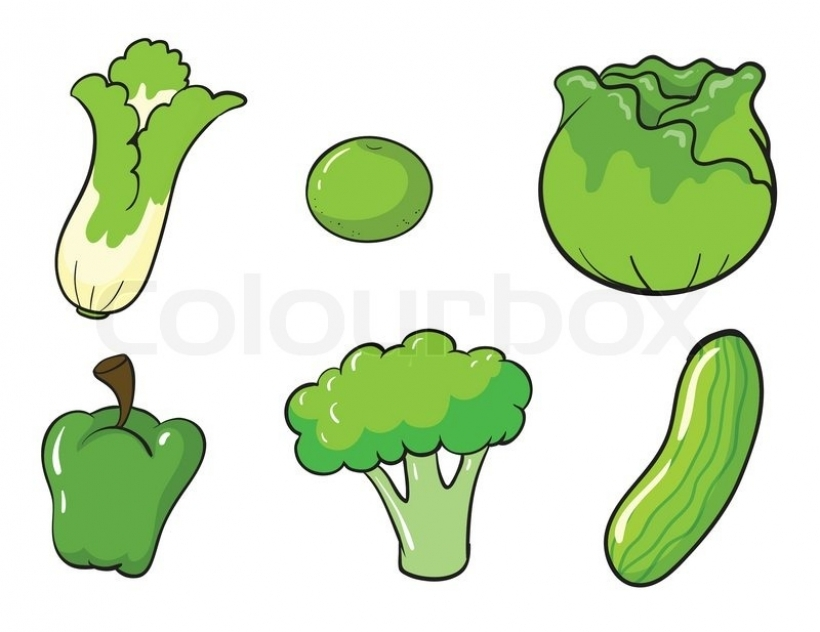 green leafy vegetables vector green vegetables vector colourbox.