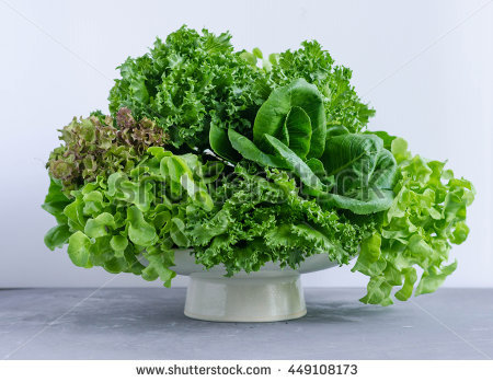 Dark Green Leafy Fresh Vegetables Metal Stock Photo 41444131.