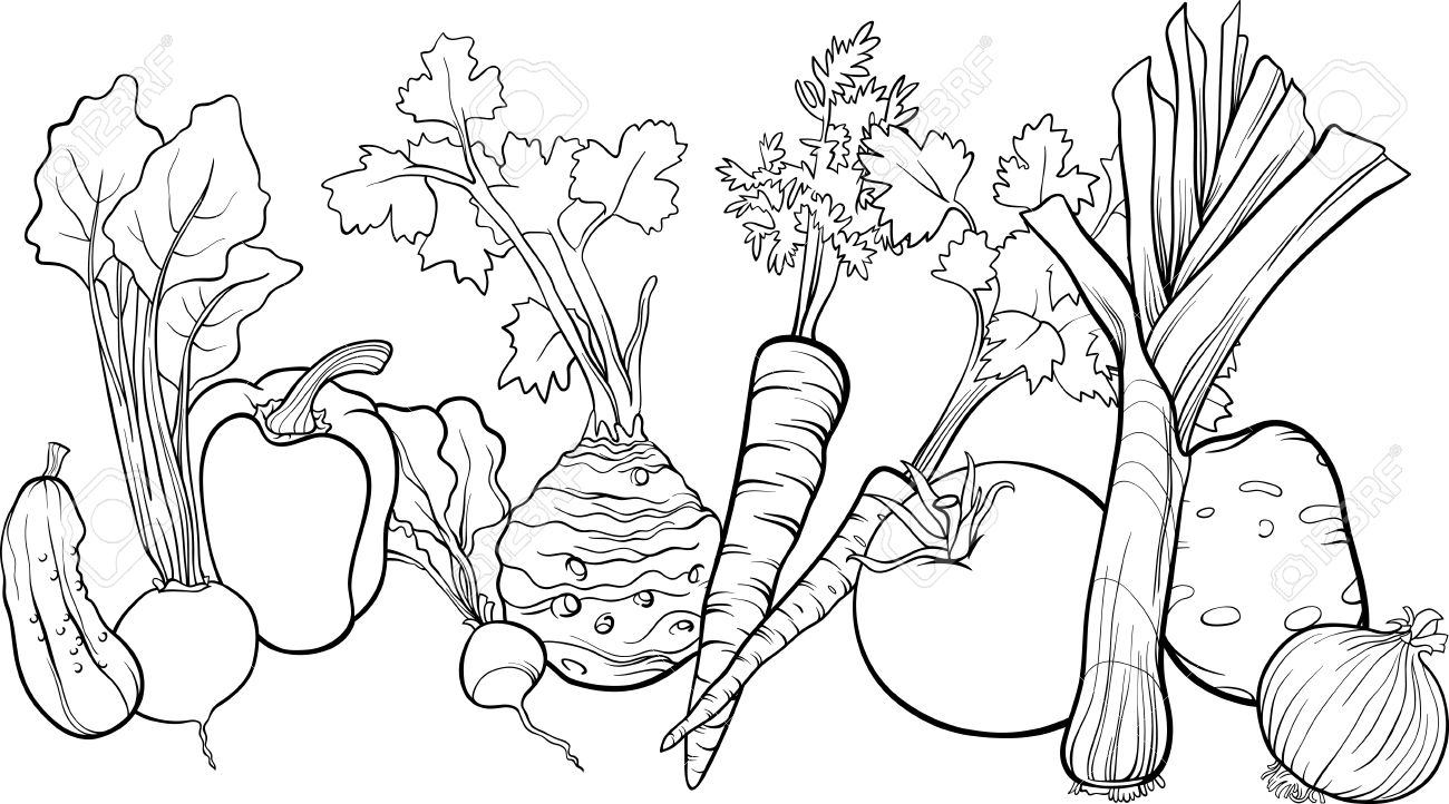 Line Drawing Zucchini : Green leafy vegetables clipart black and white clipground