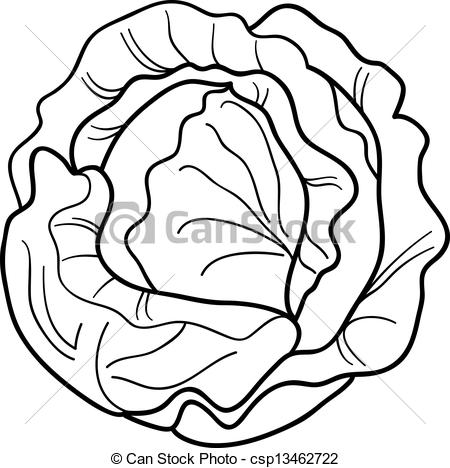 Vectors of Healthy leafy cartoon Chinese cabbage vegetable.