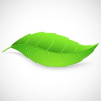 Green leaf clipart free vector for free download about free 2.