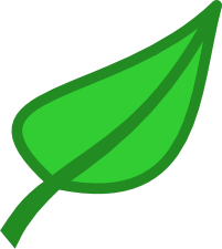 Green leaves clipart transparent background.
